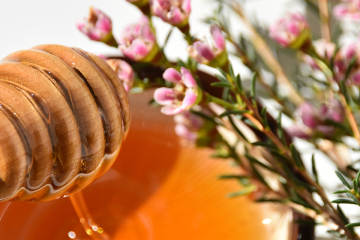 Best Manuka Honey Products