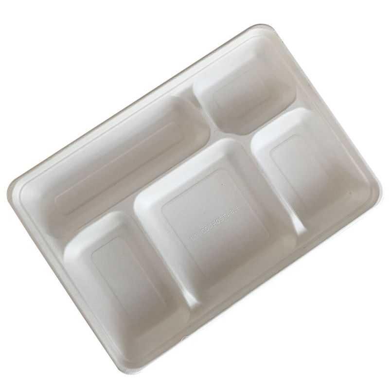 25 plateaux repas 5 cases biodegradables compostables