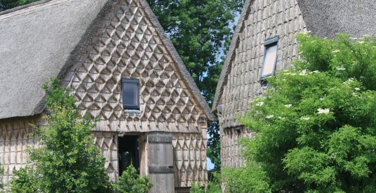 Vakantiehuis Wilmsboo Nieuw-Schoonebeek