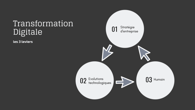 Les 3 leviers de la transformation digitale vakil consulting 2019