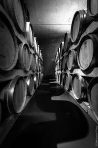 photographie de tonneaux de vins en perspective