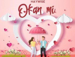 Haywise – Okan Mi