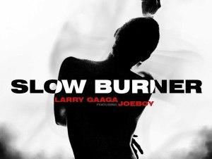 Larry Gaaga Ft. Joeboy – Slow Burner ( Instrumental )