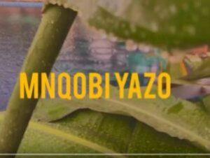 Mnqobi Yazo – Lockdown verse