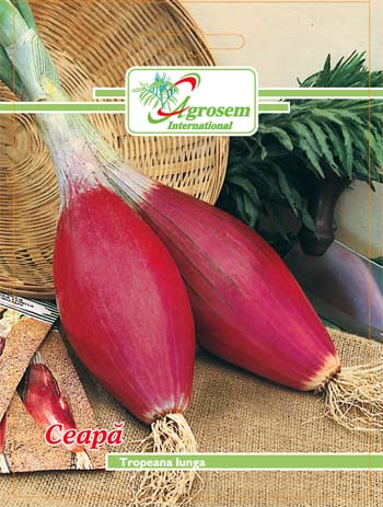 Seminte legume - Ceapa Rosie Tropeana Lunga