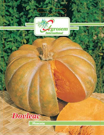 Seminte legume - Dovleac Moscata