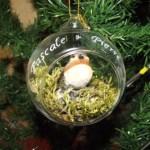 boule de noel en verre oiseau gravure prenom