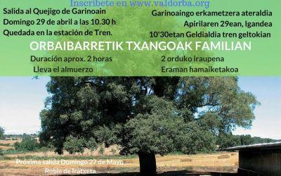 Excursión en Familia por la Valdorba: salida al quejigo de Garínoain