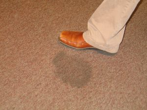 carpet stain on brown carpet