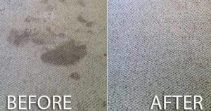 carpet cleaning in barry before and after