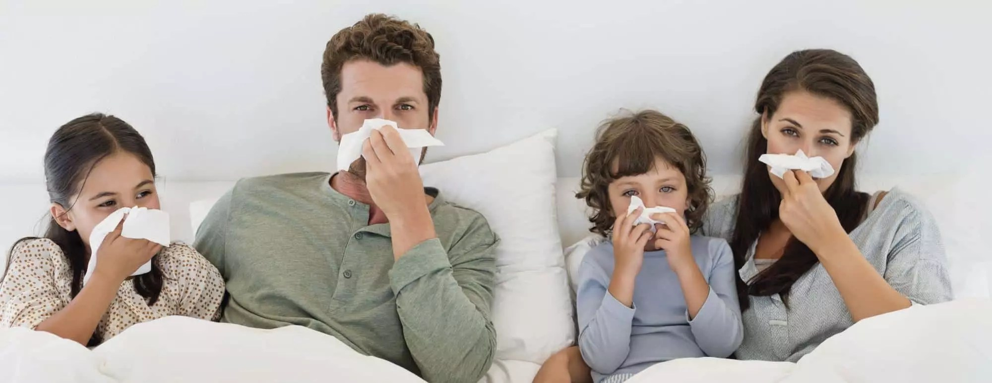 4 people in bed allergy from carpets