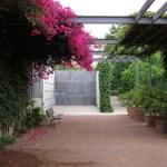 ¿Conoces el Jardín de las Hespérides en Valencia?
