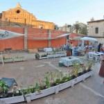 La Casa dels Bous del Cabanyal reabre como bar sociocultural con terraza y sala de conciertos