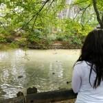 Parque Municipal San Vicente de Llíria: un pulmón verde a pocos kilómetros de Valencia