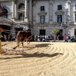 TastArròs, la fiesta del arroz valenciano, regresa a la plaza del ayuntamiento de Valencia