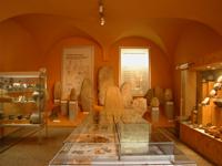 Muséum Nîmes
