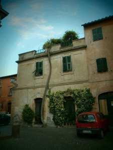 Tree climbing house off main square, Tuscania