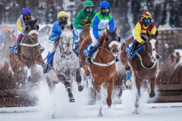 "Horse race ""White Turf"" 3"