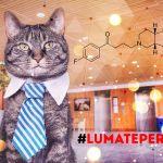 lumateperone-antipsicotico