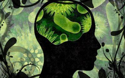 Psicobiotici, quando i Probiotici sono utili per il Benessere Mentale