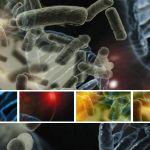 microbiota-e-psiche