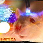 optogenetica-in-psichiatria
