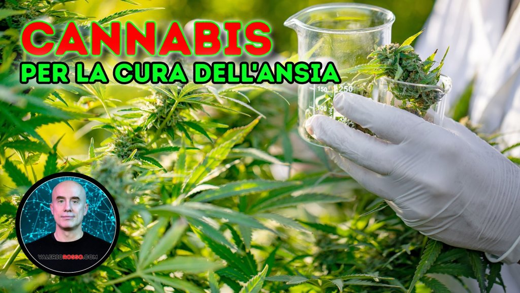 cannabis-cura-trattamento-ansia