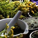 aumentare-le-difese-immunitarie-con-rimedi-naturali