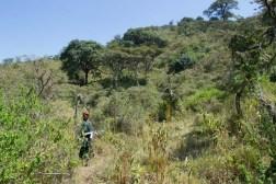 Ngorongoro Walking Safari
