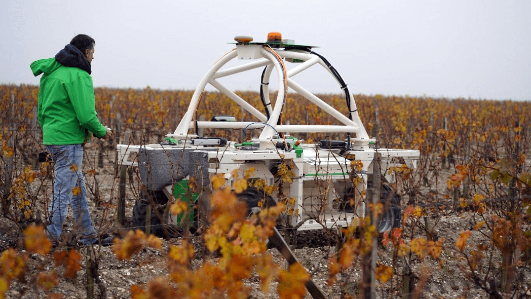 Wine Robots Are Rolling Into Europe's Swankiest Vineyards