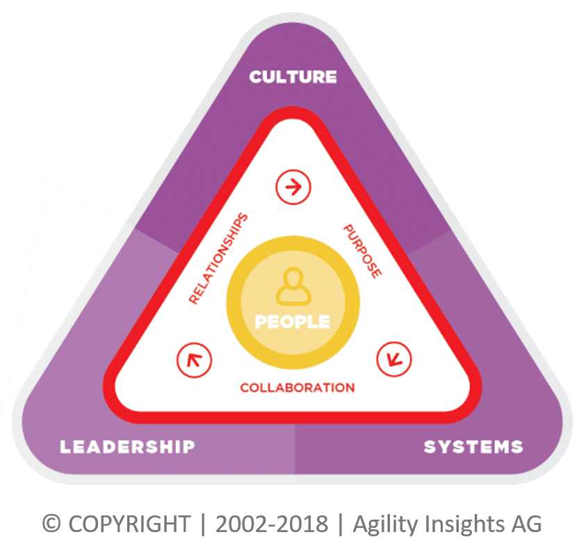 Organisational Agility Performance Triangle