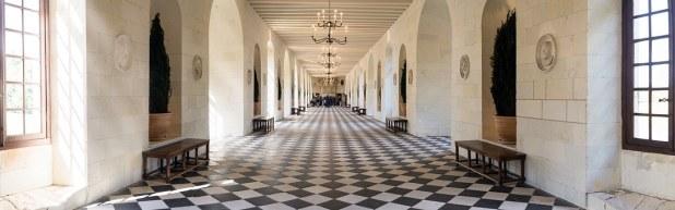 castello loira chenonceau