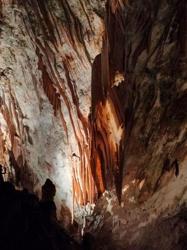 postumia grotte sito ufficiale