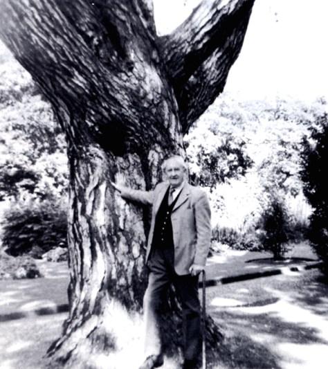 Tolkien em sua última fotografia sob sua árvore preferida - Jardim Botânico de Oxford.