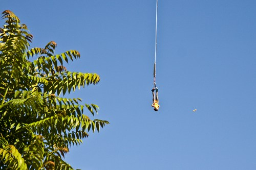 bungee-jumping03