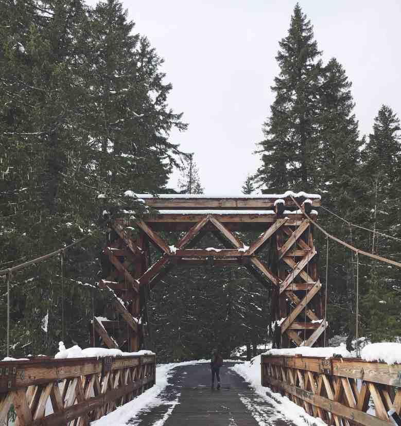 Bridge over the Nisqually River.