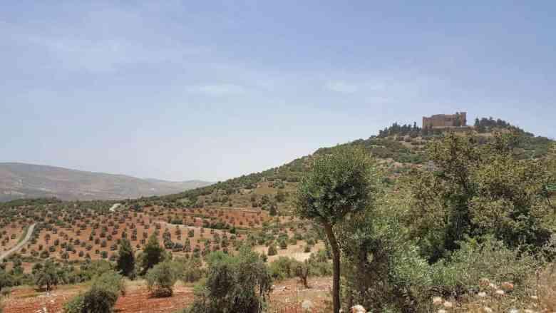 Jordan Itinerary - Ajloun