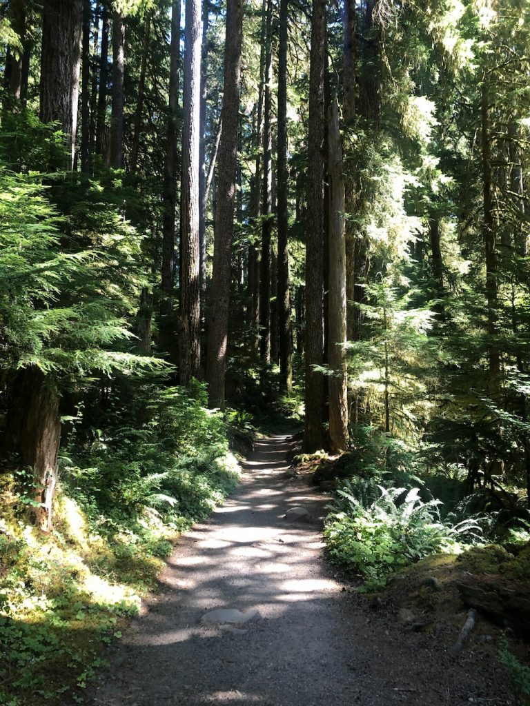 Washington Coast Road Trip - Sol Duc Falls