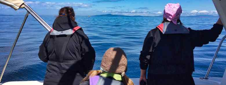 Visit the San Juan Islands - Whale Watching