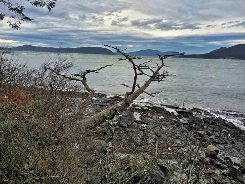 Anacortes Travel Guide - Washington Park