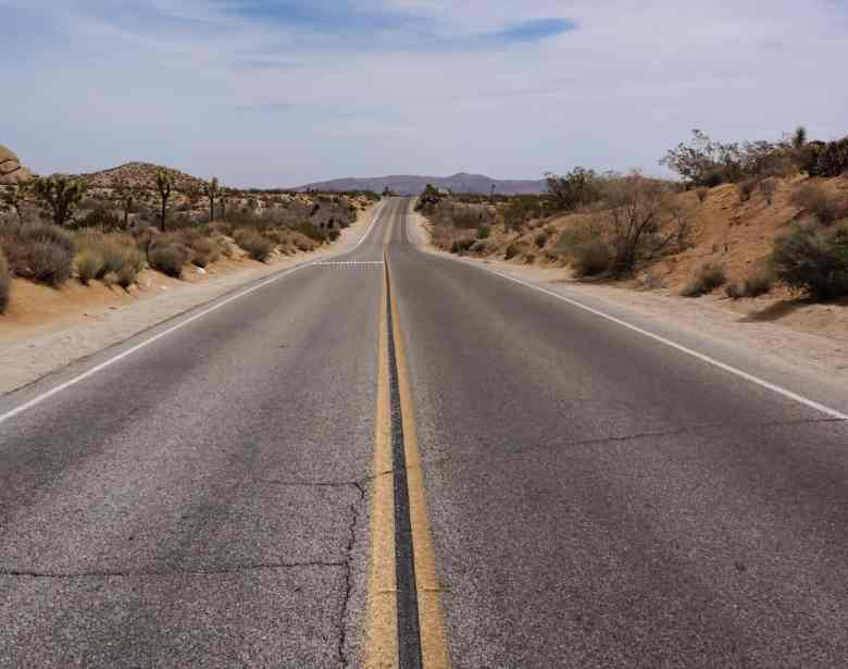 Joshua Tree Weekend Itinerary - Road in Joshua Tree