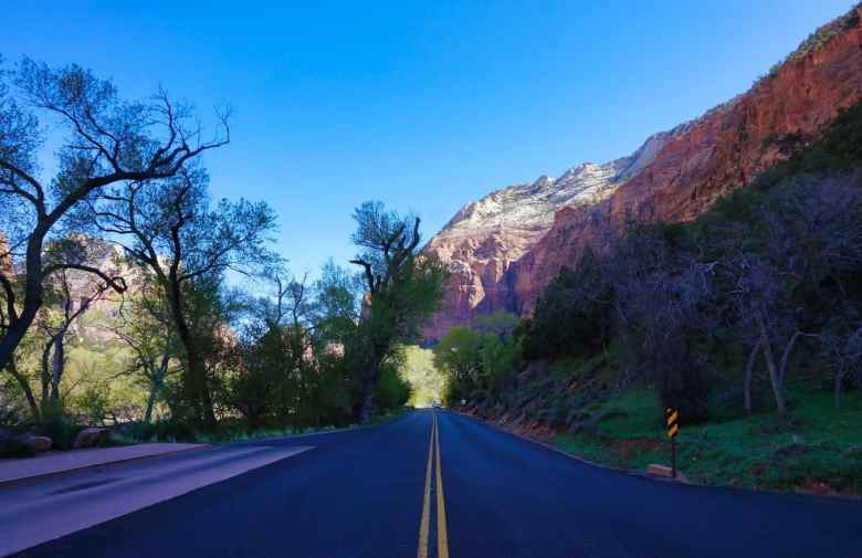 1 Day in Zion National Park - Road