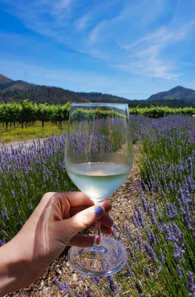 Santa Rosa - Wine Tasting