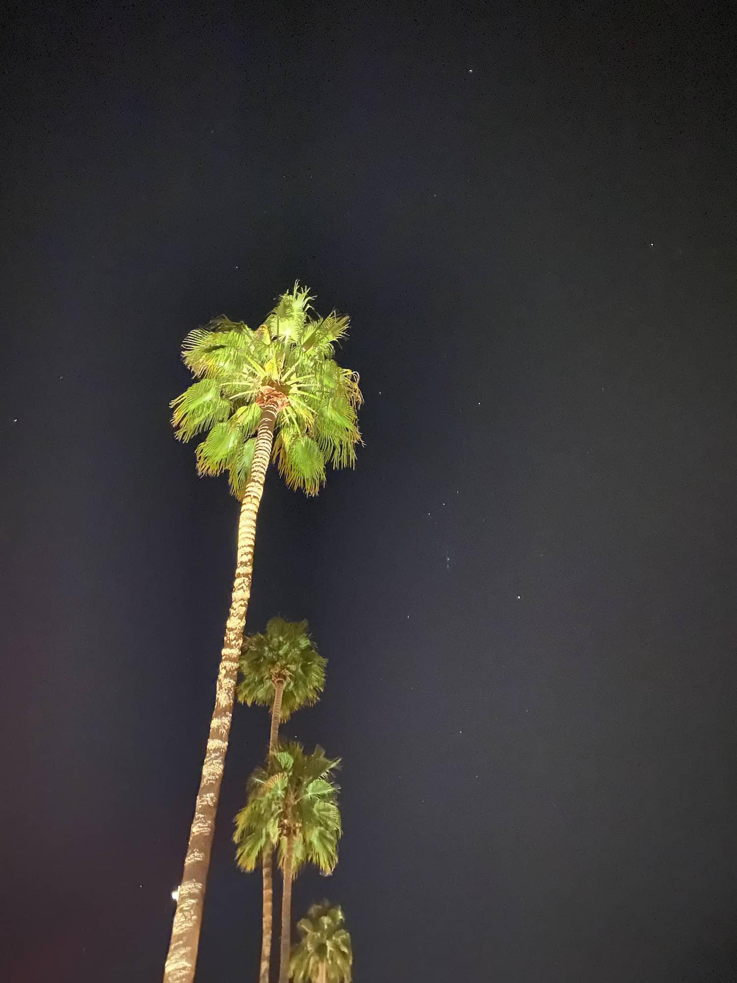 Palm Springs Stargazing