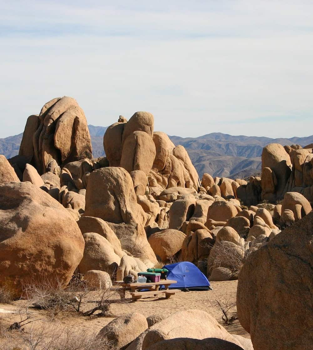 1 Day in Joshua Tree - Camping