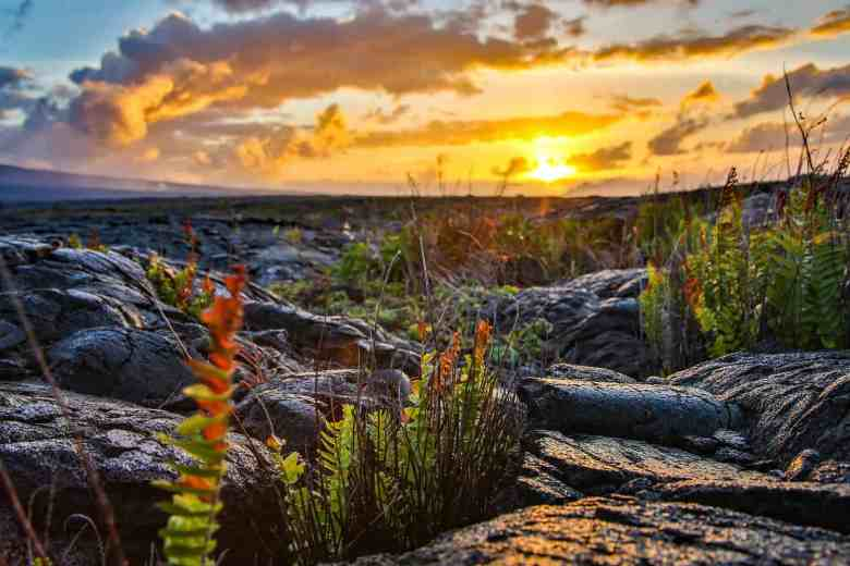 Hawaii Volcanoes National Park - Sunrise - Rennett Stowe via Flickr