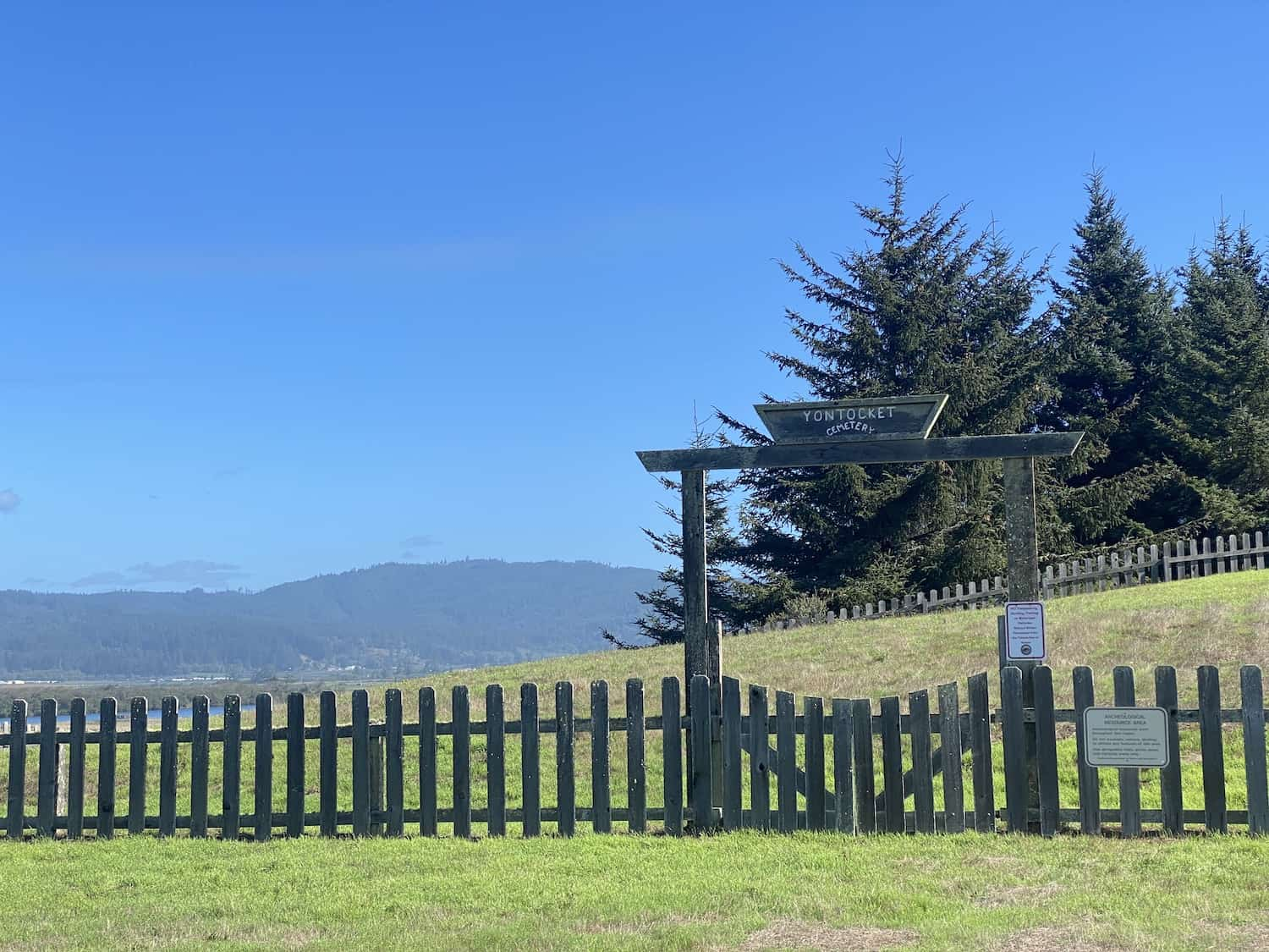Things to Do in Crescent City - Tolowa Dunes State Park