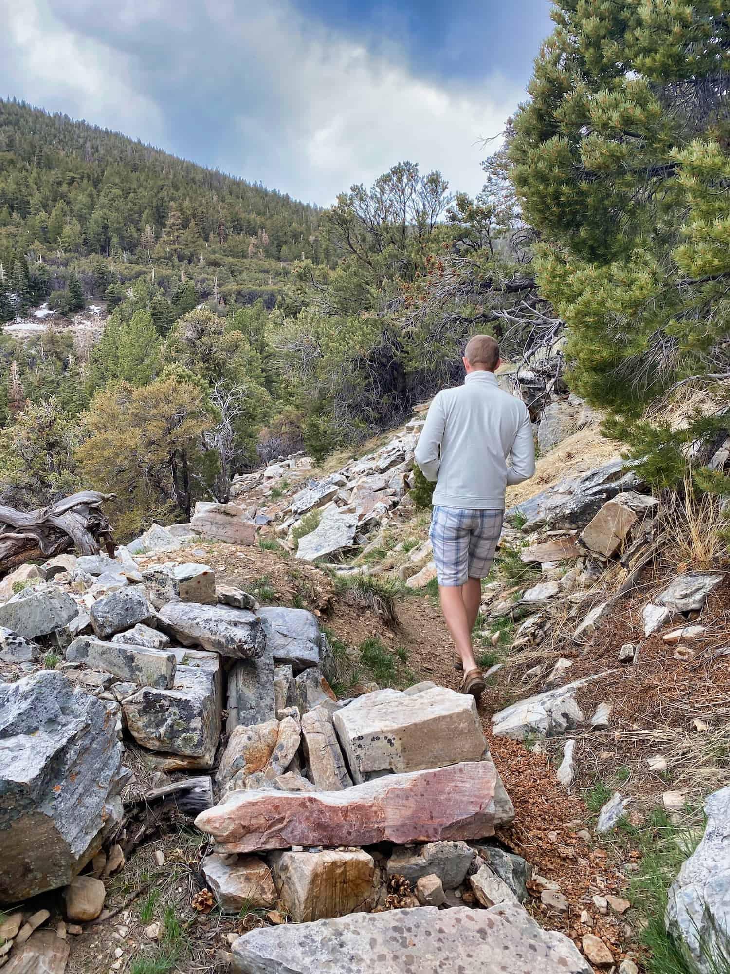 Great Basin - Hiking Osceola Ditch Trail