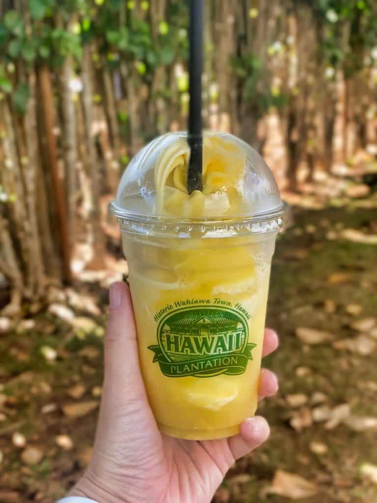 Oahu, Hawaii - Dole Plantation