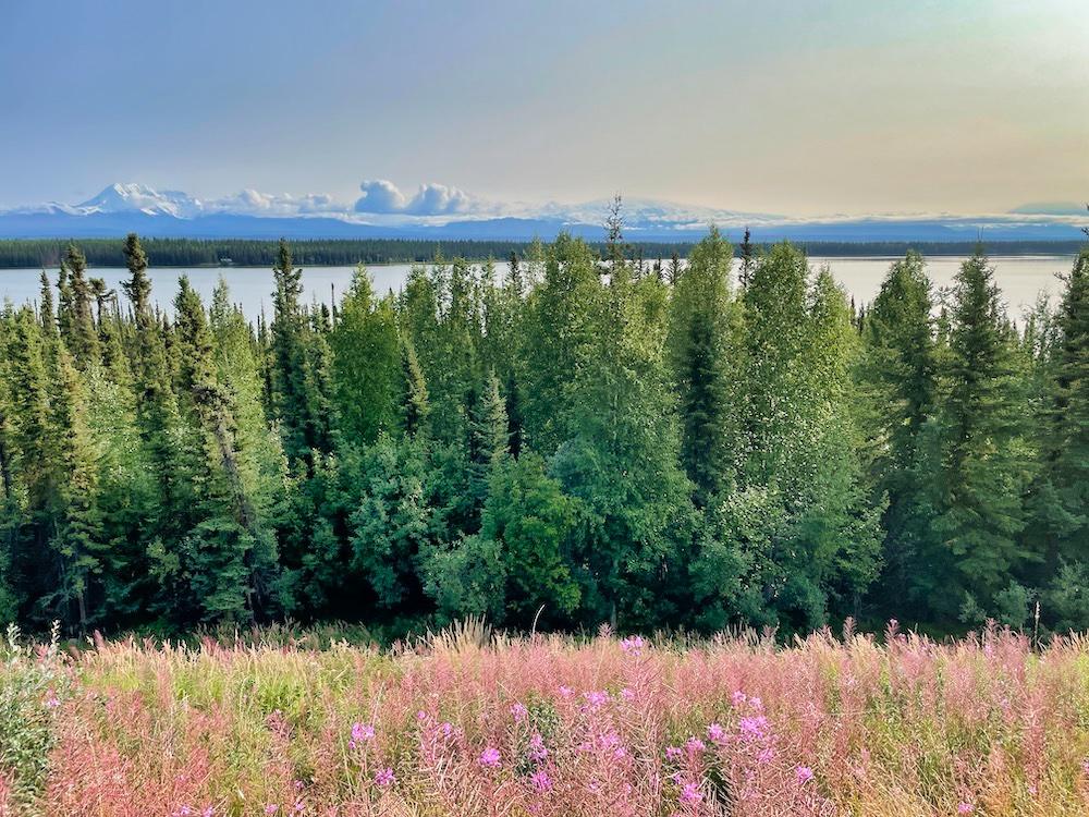 John Hall's Alaska Review - Day 2 - Wrangell-St. Elias Mountains
